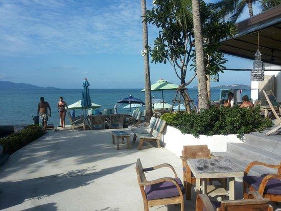 Eden Beach Bungalows : Hotelanalage am Pool/Strand