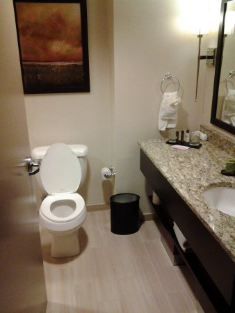 Embassy Suites by Hilton Chattanooga/Hamilton Place: bathroom