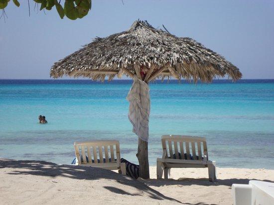 Hotel Playa Costa Verde: Clear Blue