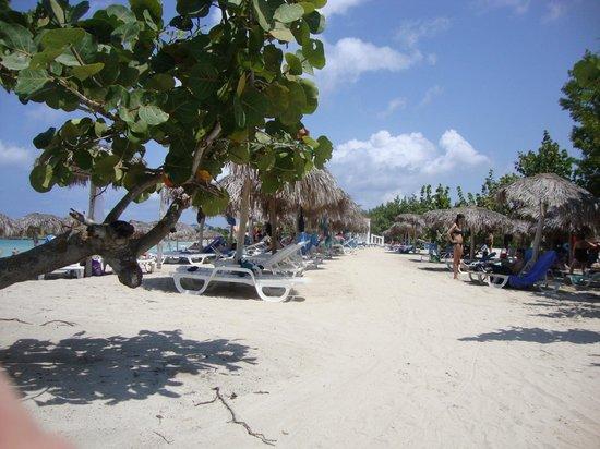 Hotel Playa Costa Verde: Clean Beach