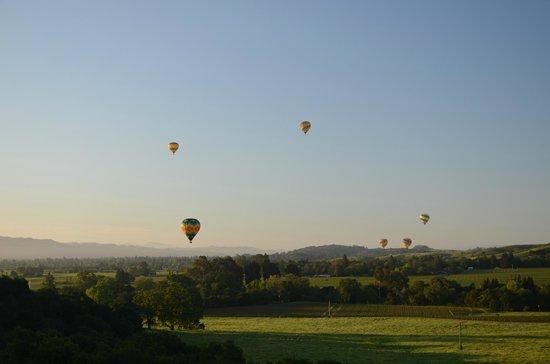 Napa Valley Aloft Balloon Rides: Exciting !