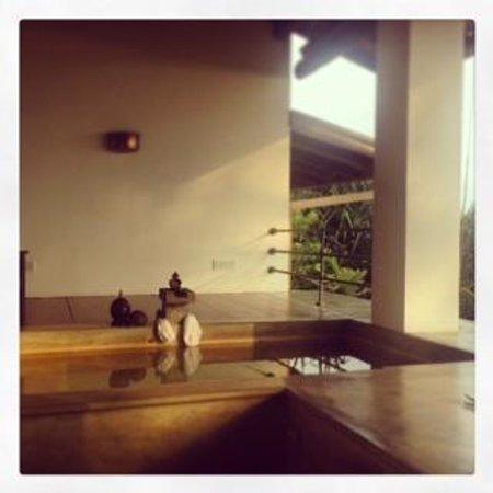 Aditya: Private plunge pool