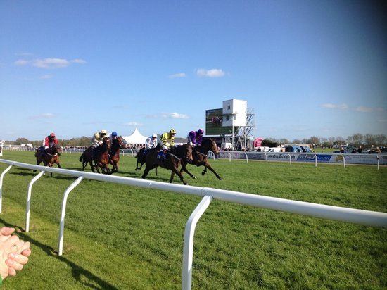 Stratford-upon-Avon Racecourse: Near the finish line in tattersall enclosure