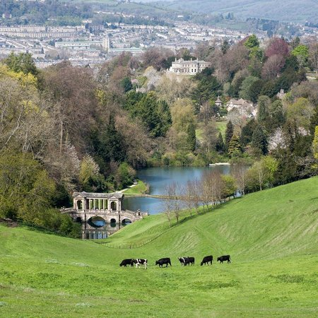 Prior Park Landscape Gardens (NT): View from top of park looking towards Bath over lake