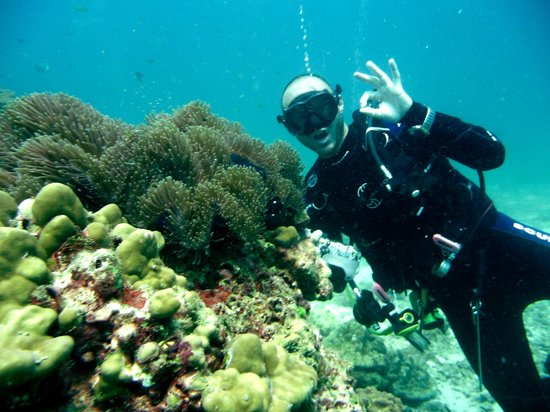 Ocean Geo Diving & Tours: Greetings for Adam))