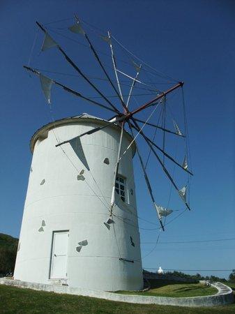 Shodojima Olive Park : 風車