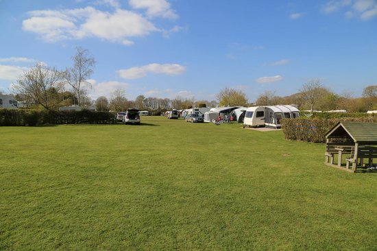 Monkton Wyld Caravan and Camping Park: Nice big open areas