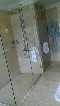 Raffles Makati: shower