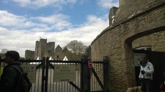 Ludlow Castle: Castle grounds