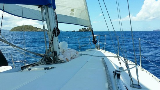 Cloud 9 Sailing Adventures: Fantastic Sail!