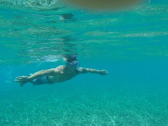 Tsunami Adventures : Diving down the BGL sea