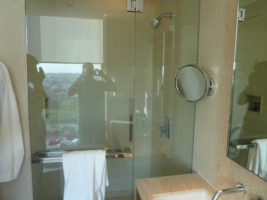 Hyatt Amritsar : shower room 2