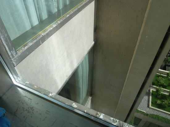 Hyatt Amritsar: birds mess outside window and on the walls