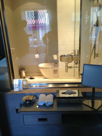 Le Grand Balcon : clear glass in bathroom
