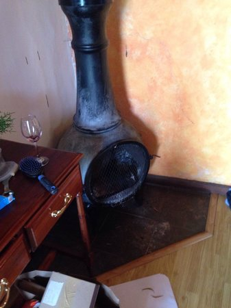 Hosteria Caballo Campana : The only source of heat in our room. The fire was dead by the time we went fell asleep