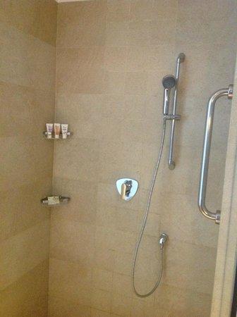 WelcomHotel Dwarka: Shower room