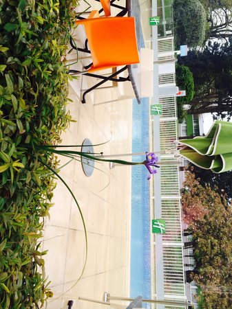 Holiday Inn Lille Ouest Englos : Pool