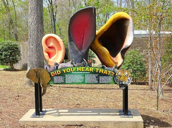 Greensboro Science Center : you can hear EVERYTHING here