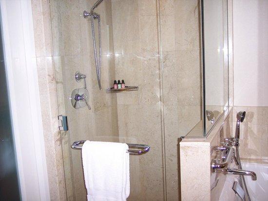 Four Seasons Hotel St. Louis: Shower