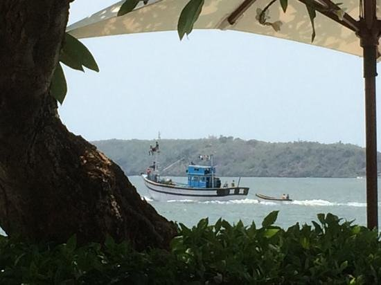 Goa Marriott Resort & Spa : passing fishing boat. (these can smell a little)