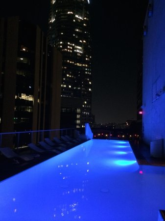 The Standard Downtown : Rooftop pool