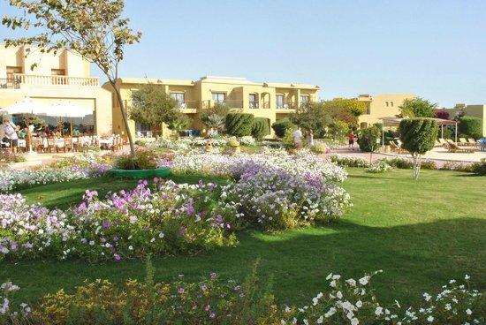 Three Corners Fayrouz Plaza Beach Resort : jardin