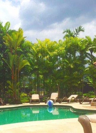 Arenal Backpackers Resort : Fabulous pool area