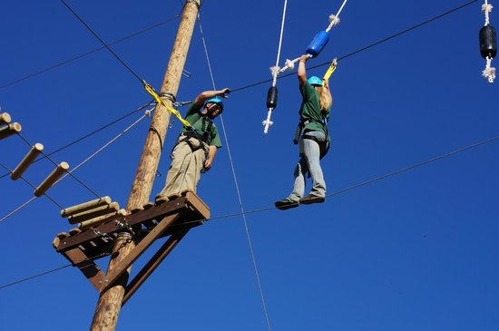 Yosemite Ziplines and Adventure Ranch: Adventure Course