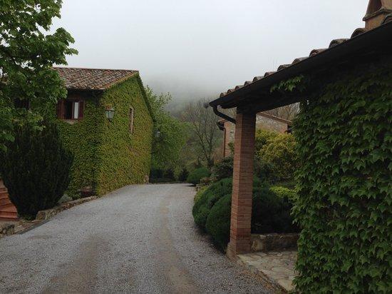 Villa di Monte Solare: viale