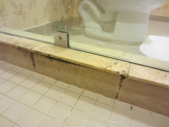 Little Rock Marriott : mold inside shower room 1930