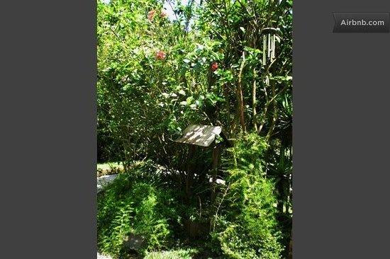 Casa de Familia : Guatemala, the country of Eternal Spring