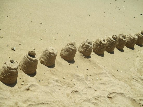 Waikiki Beach : Beach