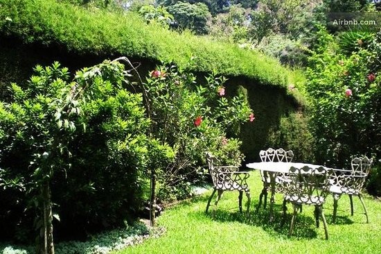 Casa de Familia : Another garden, perfect for reading and relaxing!