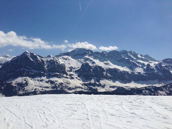 Mountain Lodge: Top of the Mountain