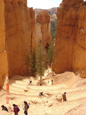 Bryce Canyon National Park: Switchbacks on the Navajo Loop Trail