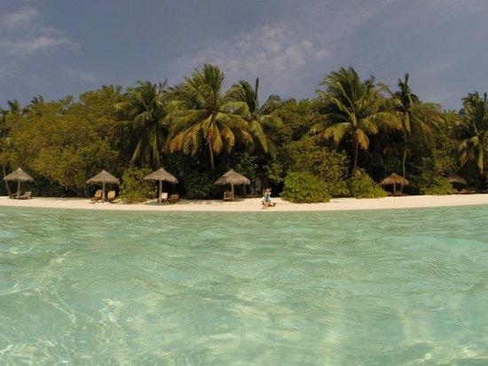 Baros Maldives: View from the lagoon
