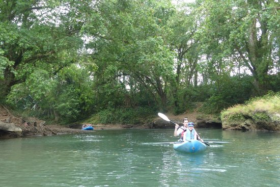 Canoa Aventura: Beautiful forest bordering the Penas river