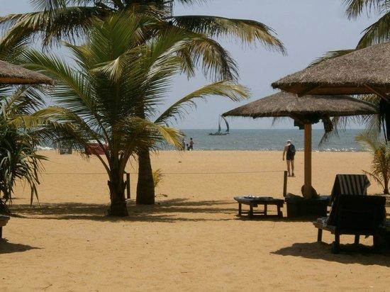 Hotel Goldi Sands: Blick vom Hotelgarten zum Strand
