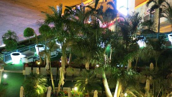 Queen of Sheba Eilat: Blick aus dem Zimer auf den Pool-Bereich