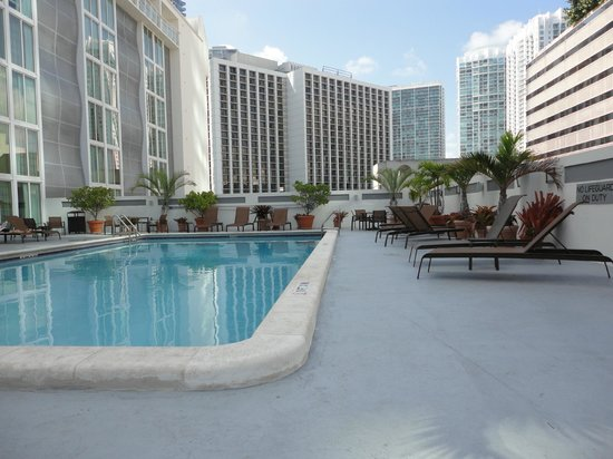 Courtyard Miami Downtown/Brickell Area: Hotel Pool