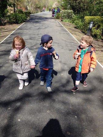 Curraghs Wildlife Park: the kids enjoying their Manx ice cream