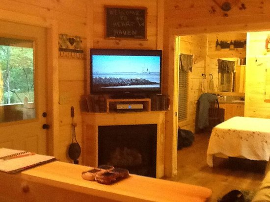 Cabins of Asheville: TV and gas fireplace
