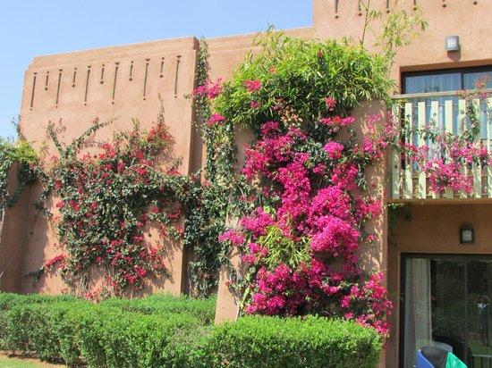 Kenzi Club Agdal Medina: toujours fleuri