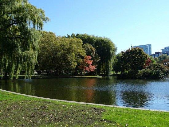 Boston Citywalks: Tour takes you through this beautiful park