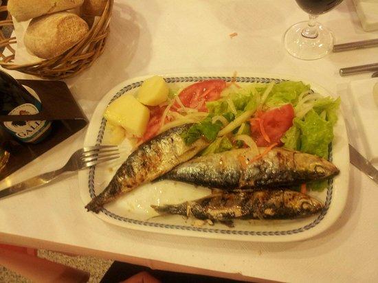 O Cardo: Сардины