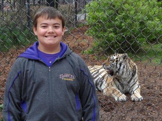LSU Tiger Stadium: Mike's Habitat