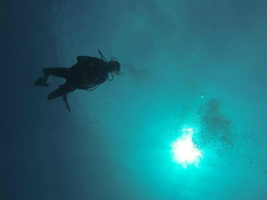 Trawangan Dive Resort : Diving in Gili Trawangan 2