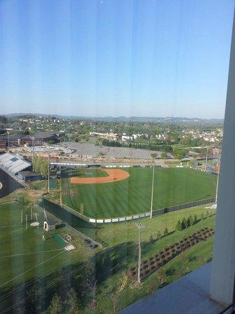 Drury Plaza Hotel Nashville Franklin: View from Room 1101