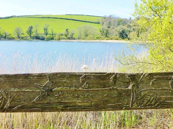 Slapton Ley Field Centre: carved rail