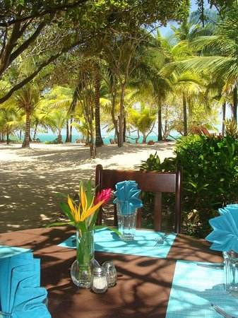 Hamanasi Adventure and Dive Resort : Lunch time